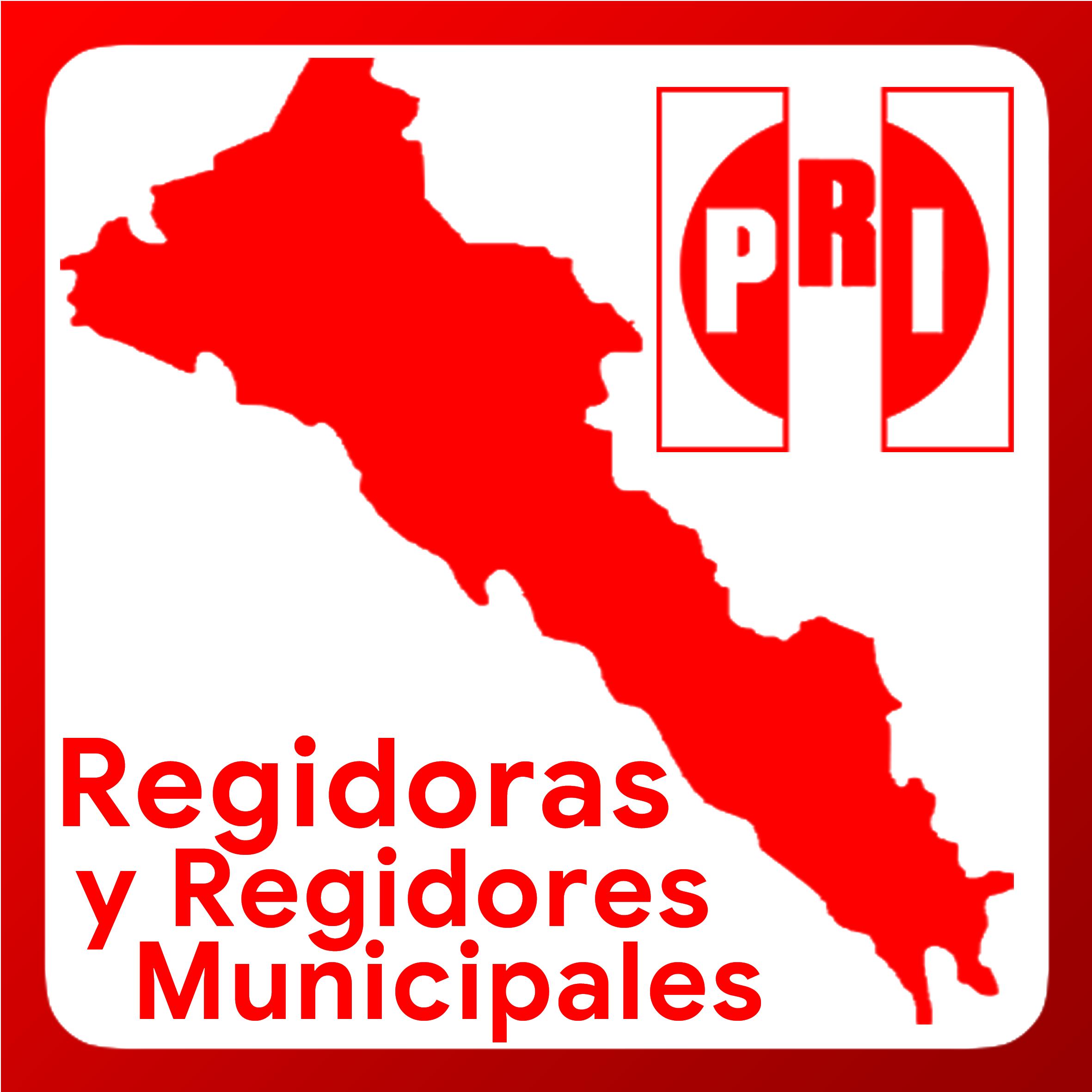 Boton activable de Regidoras y Regidores Municipales