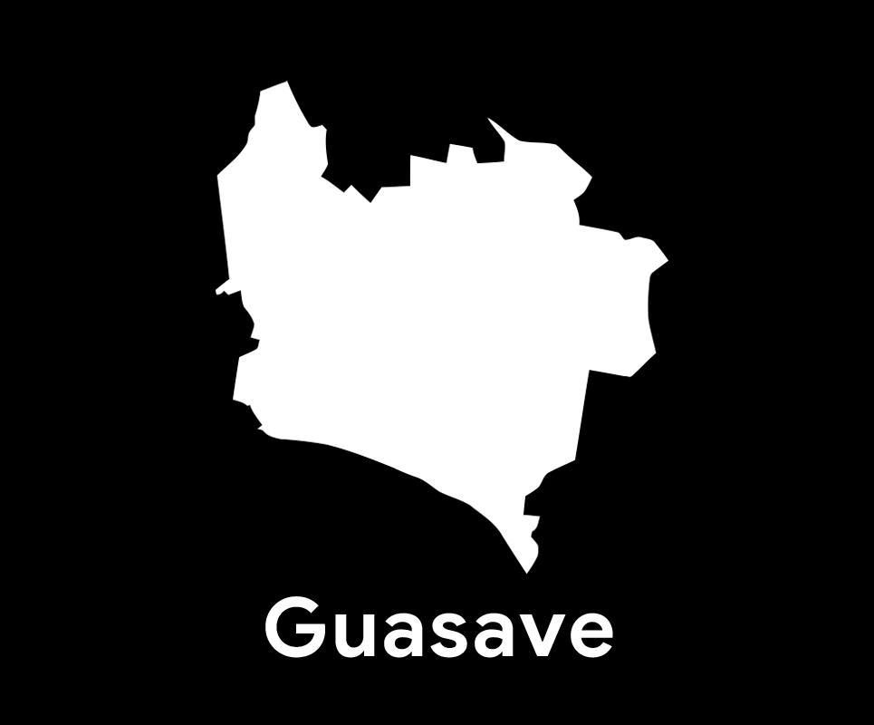 Comité Municipal de Guasave
