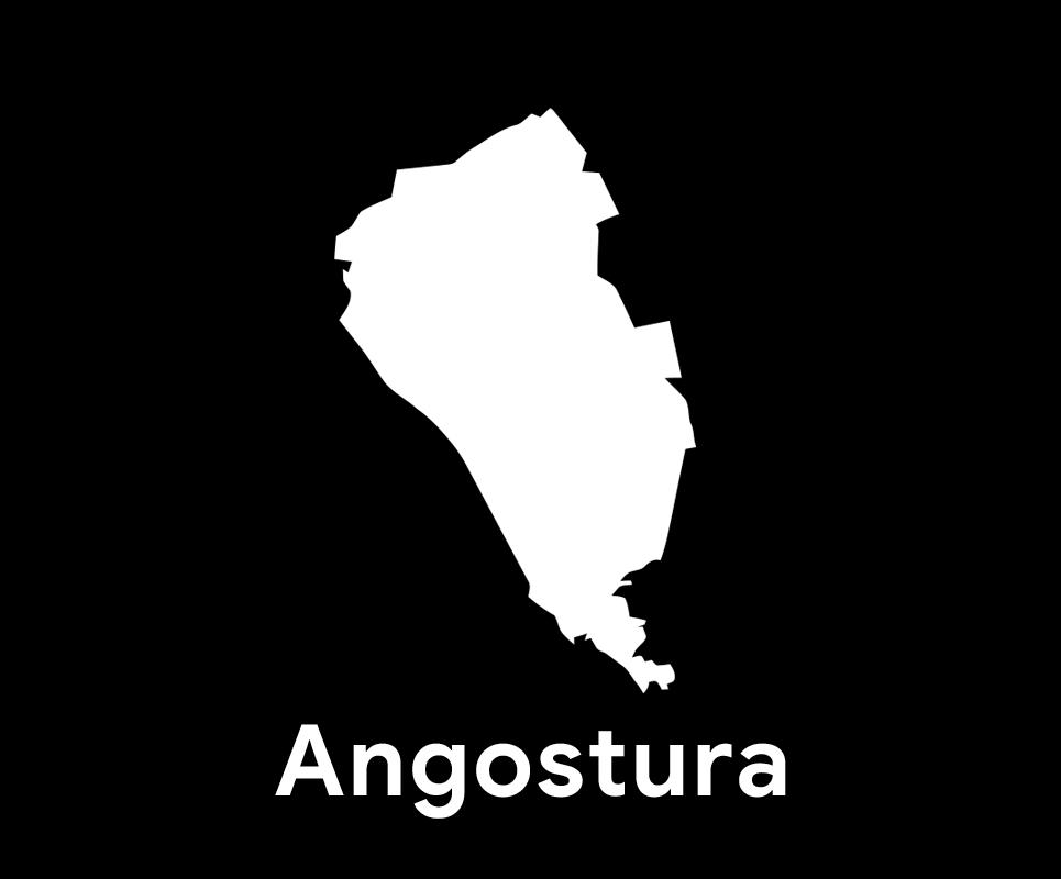 Comité Municipal de Angostura