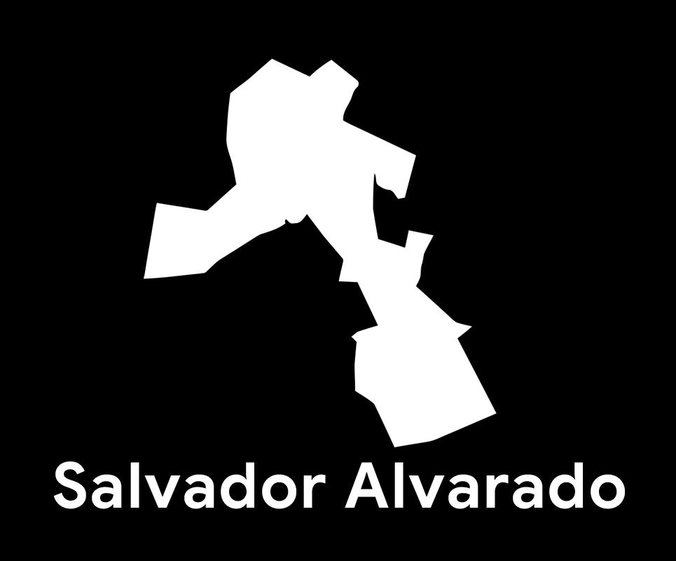 Comité Municipal de Salvador Alvarado