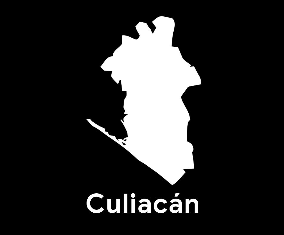 Comité Municipal de Culiacán