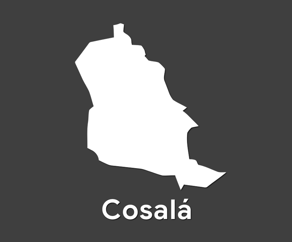 Comité Municipal de Cosalá